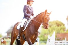 Rider woman on bay horse in dressage competition. Young rider woman on her bay horse on advanced test dressage competition at sunny day Royalty Free Stock Photography