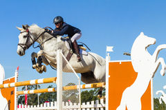 Rider Woman Horse Jumping Images libres de droits