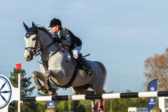 Rider Woman Horse Jumping. Rider woman horse show jumping action closeup equestrian event Royalty Free Stock Images
