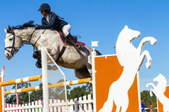 Rider Woman Horse Jumping. Rider woman horse show jumping action closeup equestrian event Royalty Free Stock Photos