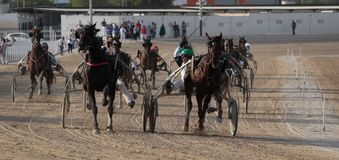 Horse harness race in mallorca hippodrome. Riders compete during a horse harness race or sulky racing in Palma de Mallorca´s hippodrome Stock Image
