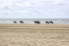 Riders on horses on the beach Stock Photos