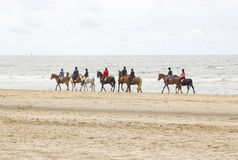 Riders on horses on the beach close to North sea Royalty Free Stock Photo