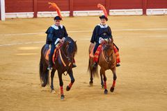 Alicante / Spain - 08 03 2018: Riders on horses before the fight with the bulls royalty free stock image