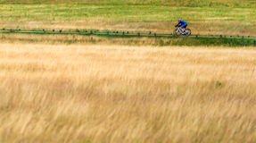 Richmond Park London Cycling. 2 riders in richmond park London Royalty Free Stock Photography