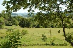 Ridge Appalachia blu fotografie stock libere da diritti