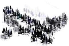 Ridge degli alberi fotografia stock