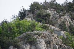 Ridge des montagnes criméennes Image libre de droits