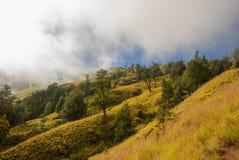Ridge des Vulkans Lizenzfreie Stockfotografie