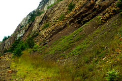 Ridge gramíneo Foto de Stock