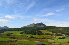 Ridge i öppet landskap Arkivfoton