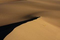 Ridge lungo le dune di sabbia Fotografia Stock