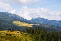Ridge Marmarosy Stockbild