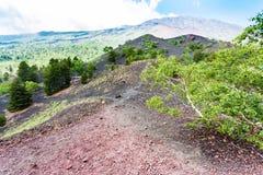 Ridge mellan gamla krater av den Etna monteringen Royaltyfri Foto