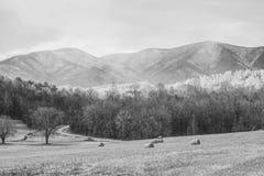 Ridge Mountain Landscape blu scenico fotografia stock libera da diritti