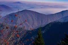 Ridge Mountains azul, North Carolina Fotografia de Stock Royalty Free