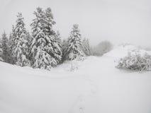Ridge nella neve fotografie stock