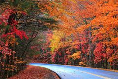 Ridge Parkway Fall bleu Photographie stock libre de droits
