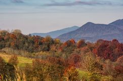 Ridge with peaks above hillside with forest. Lovely mountainous background in late autumn Royalty Free Stock Images