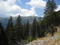 The Ridge. Piatra Craiului mountain Ridge in a sunny cloudy day Stock Image
