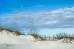 ridge wydm piasku zdjęcia royalty free