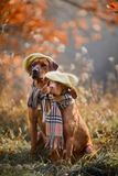 Ridgeback And Vizsla Portrait Stock Images