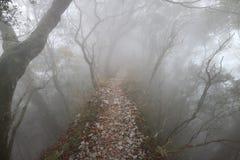 Ridgeline, Nebel lizenzfreies stockbild