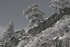 Ridgeline widok Zdjęcie Royalty Free
