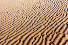 Ridges on a Sandy Beach Stock Photos