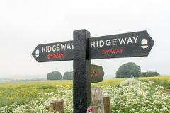 Ridgeway National Trail UK royaltyfri fotografi