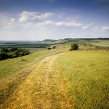 The ridgeway path Royalty Free Stock Photos