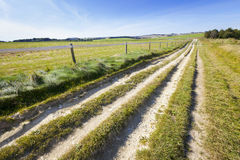 Ridgeway Path on Marlborough Downs Stock Photo