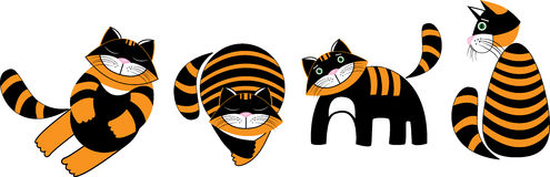 Ridiculous striped kittens Royalty Free Stock Images