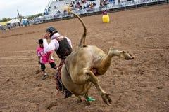 riding быка Стоковое фото RF