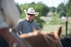 riding лошади ковбоя Стоковая Фотография RF