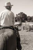 riding лошади ковбоя Стоковые Фотографии RF