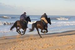riding лошади стоковая фотография rf