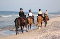 riding лошади пляжа Стоковые Изображения