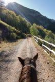 Riding Royalty Free Stock Photo