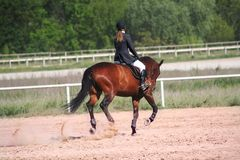 Riding. Hors riding in a dust arena Stock Photo