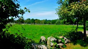 Riding area within a split rail fence seen in the distance. In the foreground is a bright green field surrounded by a stone wall and deciduous trees royalty free stock photography