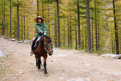 Riding in autumn Stock Image