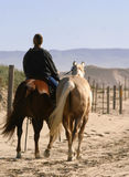 Riding on Beach. One lone rider with two horses on the beach Royalty Free Stock Image