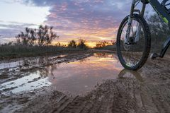 Riding a bicycle through the countryside, with a wheel of a bicycle in a puddle. royalty free stock photography