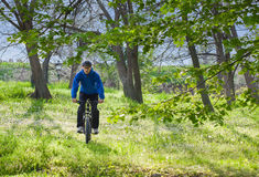 Riding bicycle. In the park, during spring Royalty Free Stock Photography