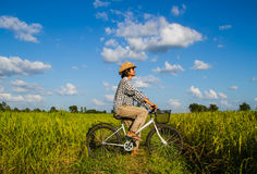 Riding bicycle in the rice field Stock Photo