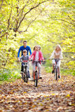 Riding on bicycles stock images