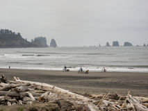 Riding bicycles on the beach. A group of people riding their bicycles on the beach in Olympic National Park, Washington Royalty Free Stock Photo