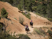 Riding in Bryce Canyon National Park, Utah, USA Royalty Free Stock Images