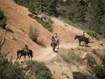 Riding in Bryce Canyon National Park, Utah, USA Royalty Free Stock Photo